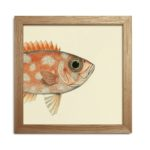 The Dybdahl Co. - Half Fishes Head Print