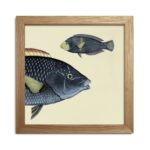 The Dybdahl Co. - Half Fish Head Print - Velvety beauty