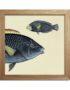 Half Fishes Print Fra The Dybdahl