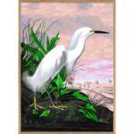 The Dybdahl Co. - Snowy Heron Remixed